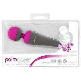 Massager Vibrator PalmPower Massager